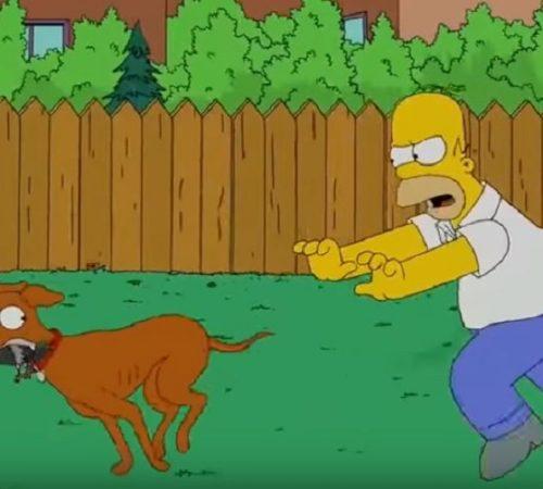 ¿Los Simpson predijeron la muerte de Chimuelo?