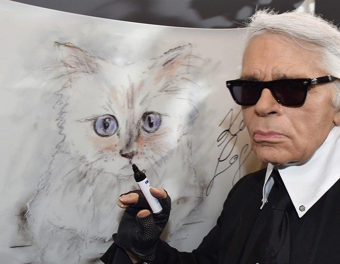 Esta gata heredará parte de la fortuna de Karl Lagerfeld